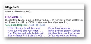 Blogodolar Mendapat Google Sitelinks dalam Usia 5 Bulan