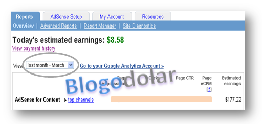 Adsense Earning March 2011