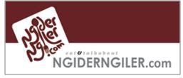 NgiderNgiler logo