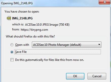Simpan file foto
